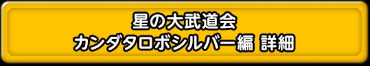 星の大武道会 カンダタロボシルバー編 詳細