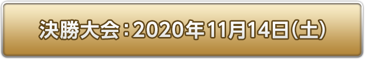 決勝大会:2020年11月14日(日)